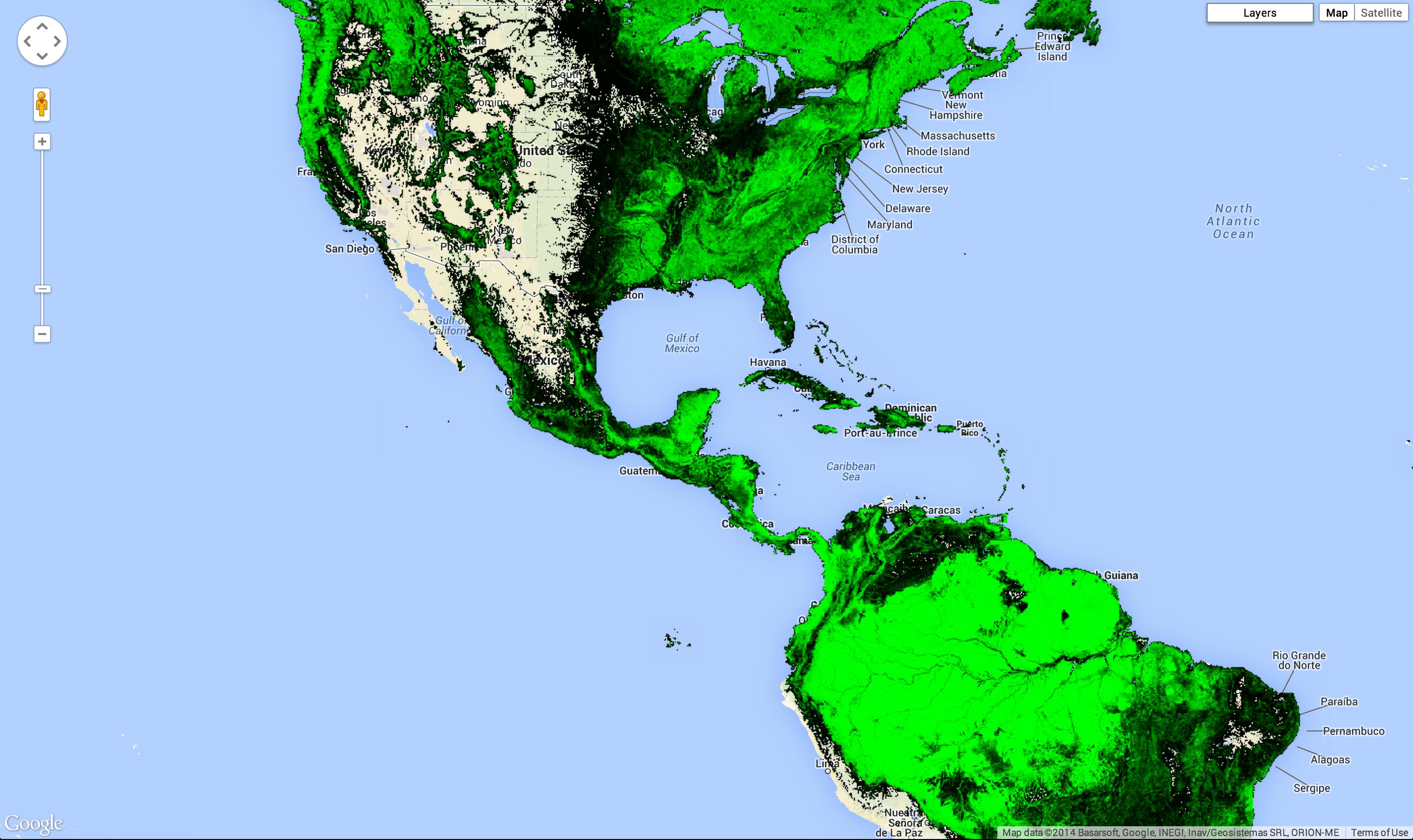 Americas treecover
