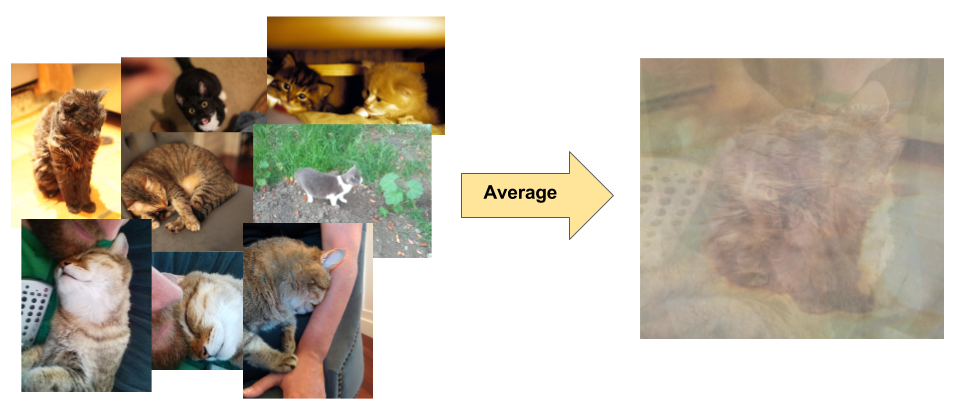 collage of photos featuring cats in a variety of positions, with different backgrounds and lighting conditions, and the resulting averaged pixel data from the images