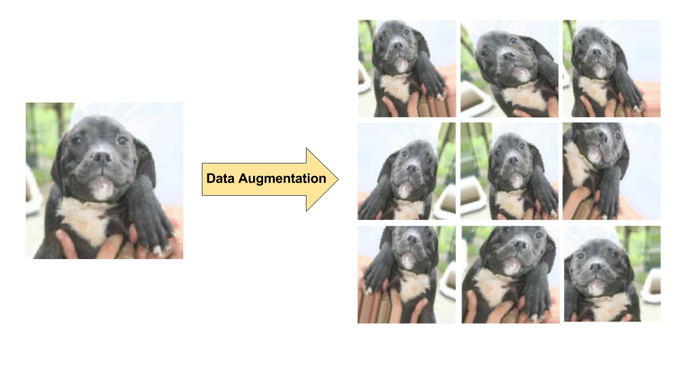 Diagram of data augmentation on a single dog image, producing 9 new images via random transformations