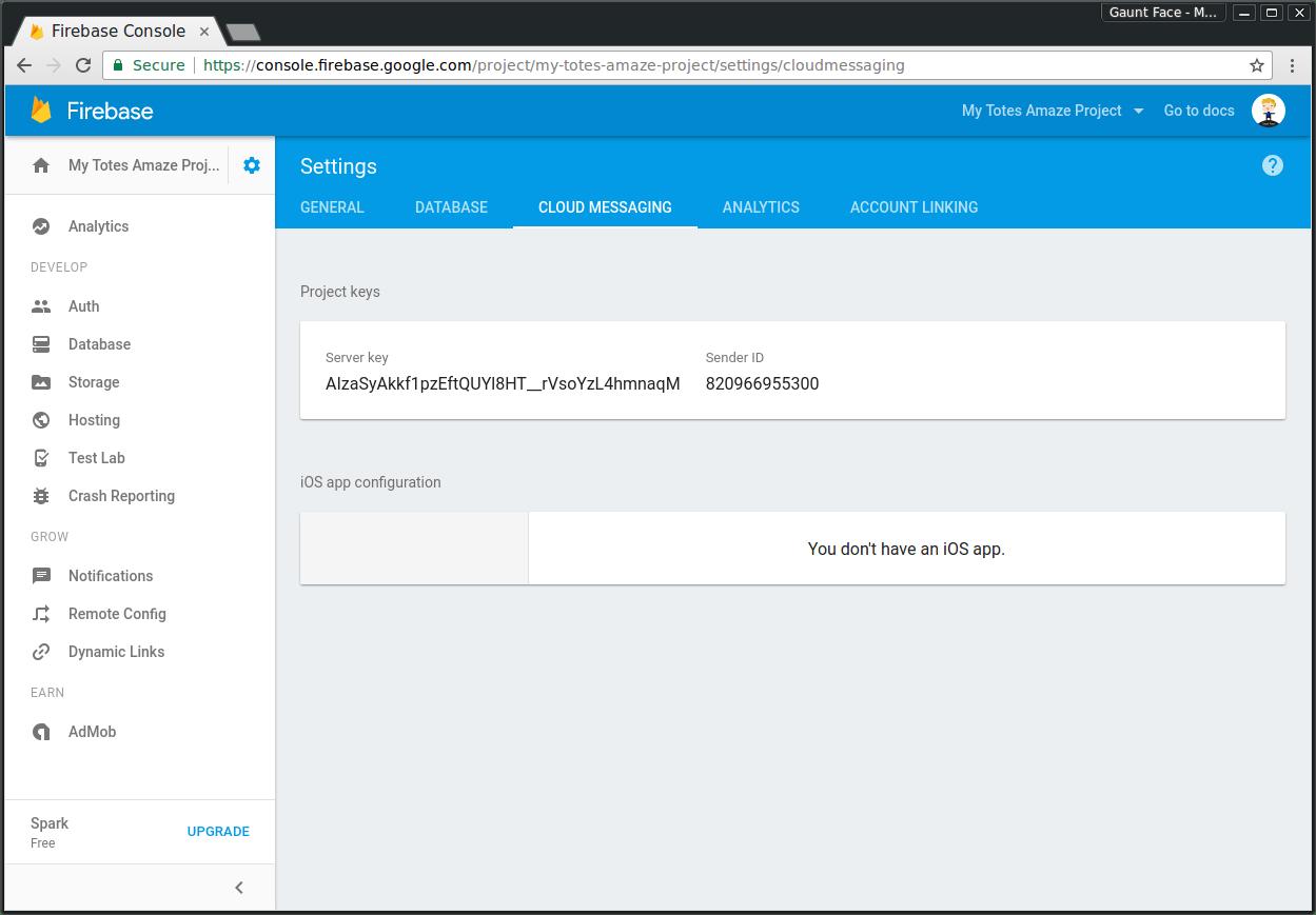 Firebase Project Cloud Messaging Menu
